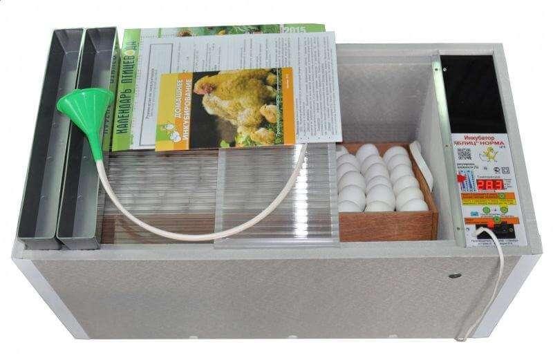 Как не ошибиться в выборе инкубатора для яиц?