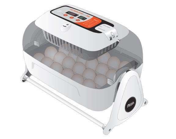 мини инкубатор для яиц